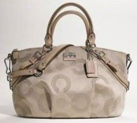 coach purse image