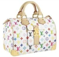 louis vuitton purse image