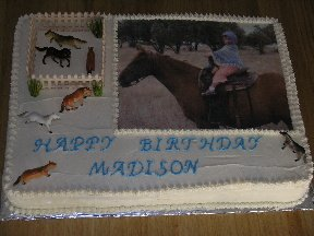 horse picture cake